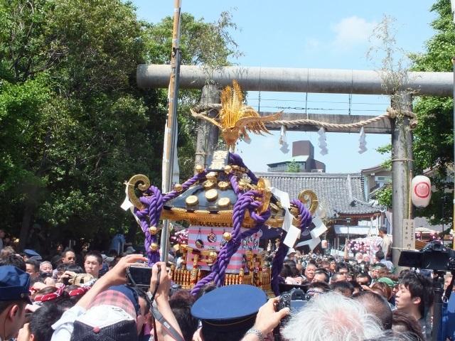 三社祭り 167.jpg