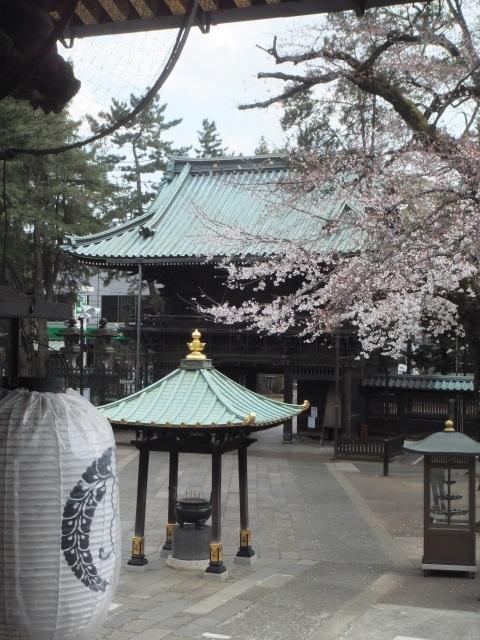 桜散歩 021.jpg