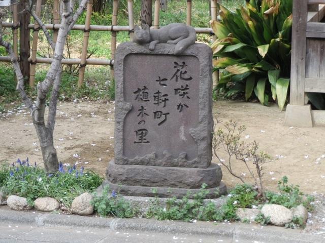 飛鳥山・染井 099.jpg